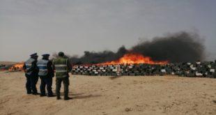 Laâyoune | Près de 12 tonnes de drogue incinérées