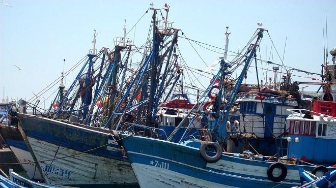 Pêche Côtière et rtisanale | Recul de 8% des débarquements au S1-2020