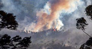 Huelva feux de forêt des Espagnols évacués par milliers