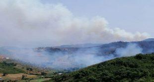mdiq fnideq feu de forêt