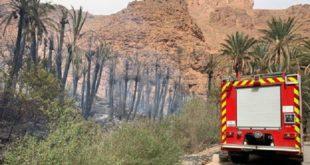 Tiznit | Extinction d'un incendie déclenché à l'Oasis d'Ait Mansour