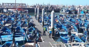 Covid-19 Opération de désinfection du port d'Essaouira