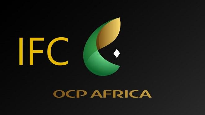 Partenariat entre OCP Africa et l'IFC pour renforcer les filières du riz