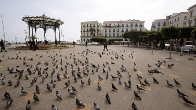 Le New York Times brosse un tableau sombre de la situation en Algérie