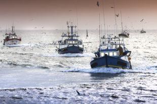 Maroc Russie Signature d'un nouvel accord de pêche maritime