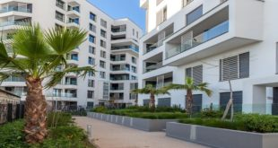 Plf 2021 Immobilier