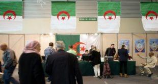 algerie elections