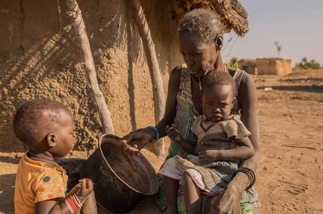 famine mondiale covid