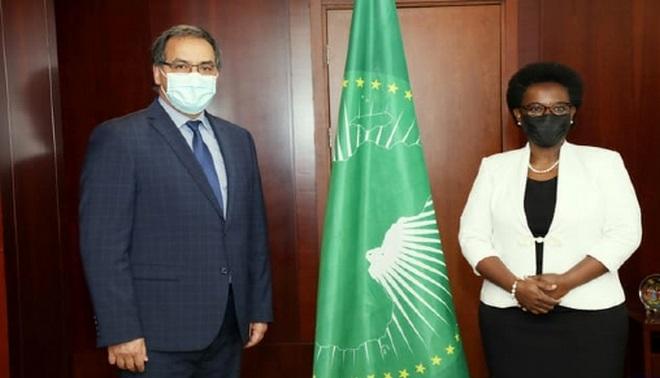 Union africaine,Addis-Abeba,CEA-ONU,Mohamed Arrouchi