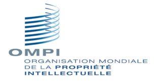 OMPI,Propriété intellectuelle,PME