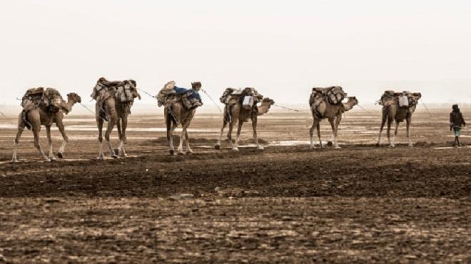 Sahara marocain,télévision espagnole,La2,sahraouie,Maroc-Espagne,Televisión Española