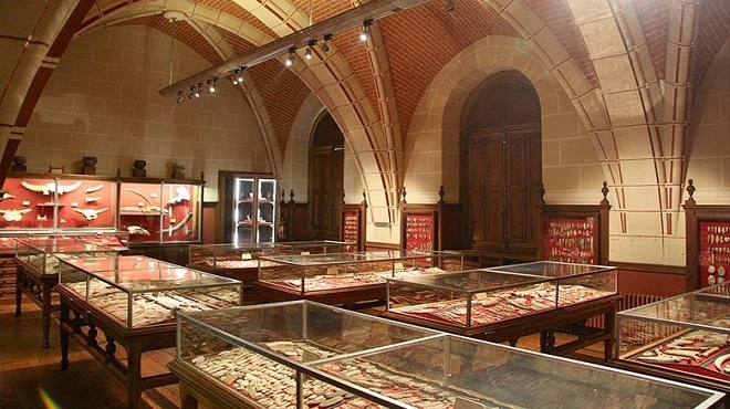 UNESCO,Coronavirus,musées