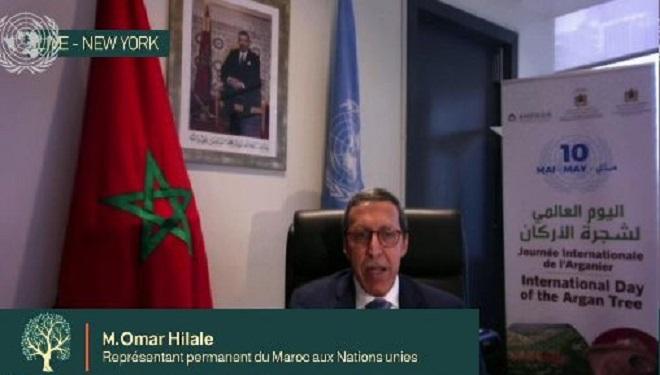 ONU,Omar Hilale,Arganier