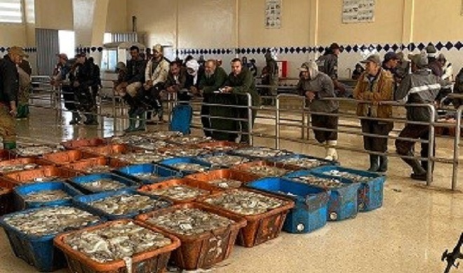 Maroc Espagne Crise,pêche au poulpe,Dakhla