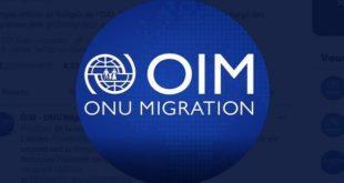 PMM,Pacte de Marrakech,OIM,Antonio Vitorino