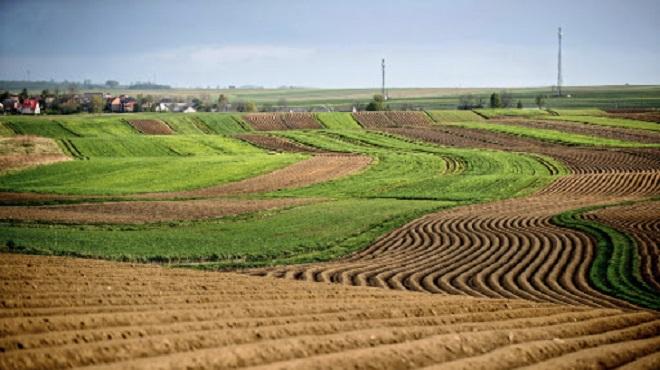 Maroc-AFD,Génération Green