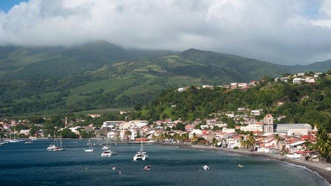 variants Delta,Martinique