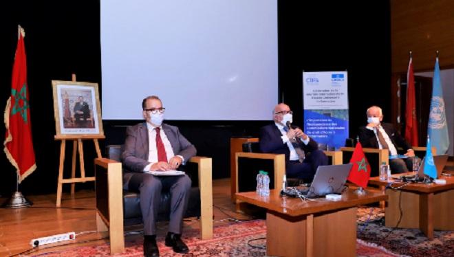 IDUAI 2021,UNESCO,CNDP,CDAI