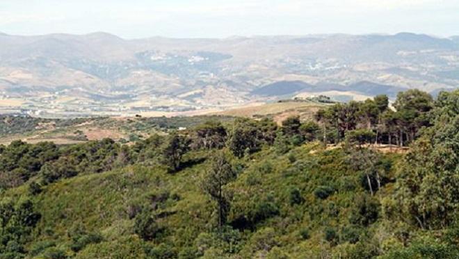 département des Eaux et Forêts