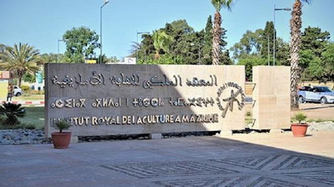 IRCAM,Prix de la culture amazighe,Institut Royal